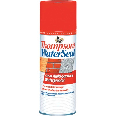 Thompson's WaterSeal Clear Water-Based MultiSurface Waterproofer Sealer, 12 Oz.